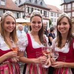 Eroeffnung-Weinmarkt-2014 (18)