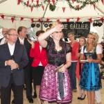 Bergsträßer Winzerfest 2013-18