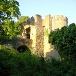 Blick aufs Alsbacher Schloss