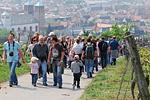 Bergsträßer Weinlagenwanderung am1. Mai