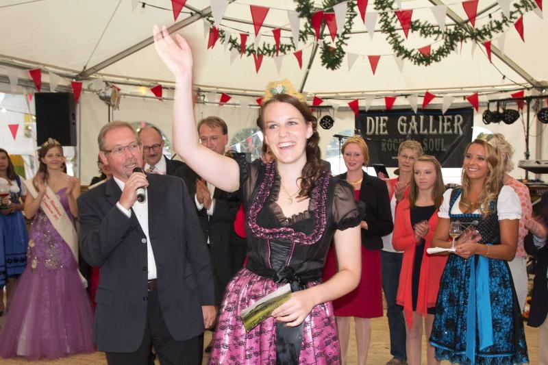 Bergsträßer Winzerfest 2013-17