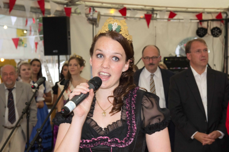 Bergsträßer Winzerfest 2013-23