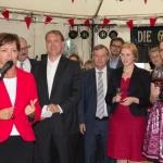 Bergsträßer Winzerfest 2013-10