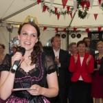 Bergsträßer Winzerfest 2013-24